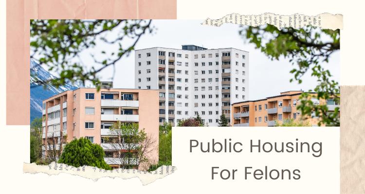 Public Housing For Felons
