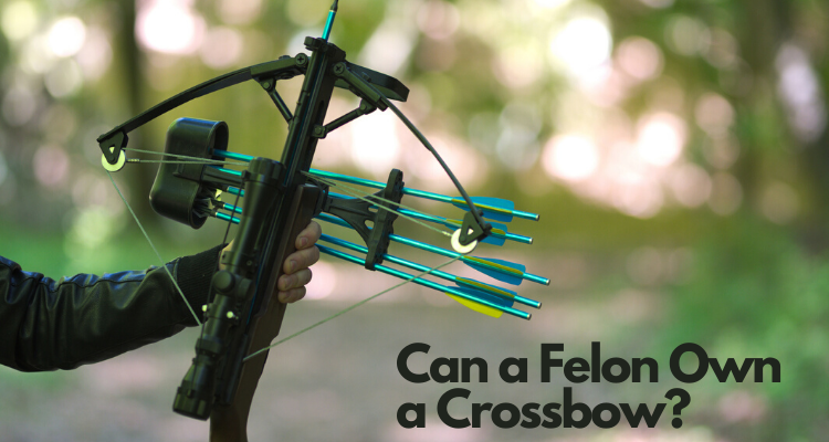 Can a Felon Own a Crossbow