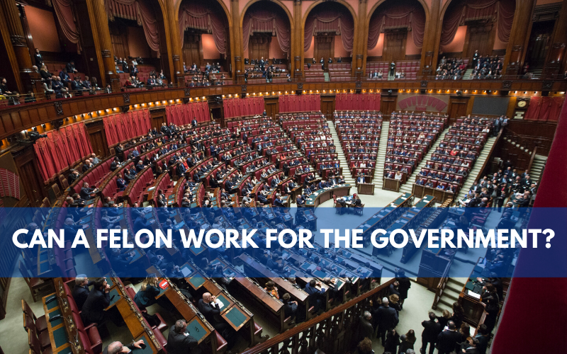 Can A Felon Work For The Government