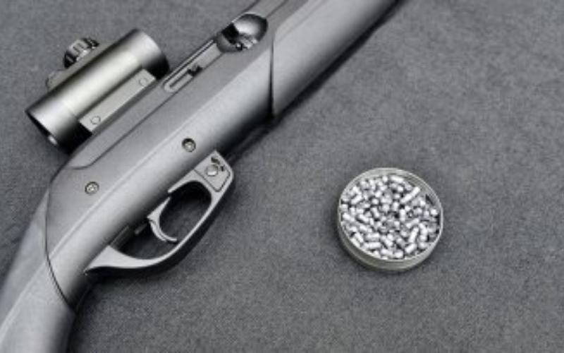 Can A Felon Own a Pellet Gun?