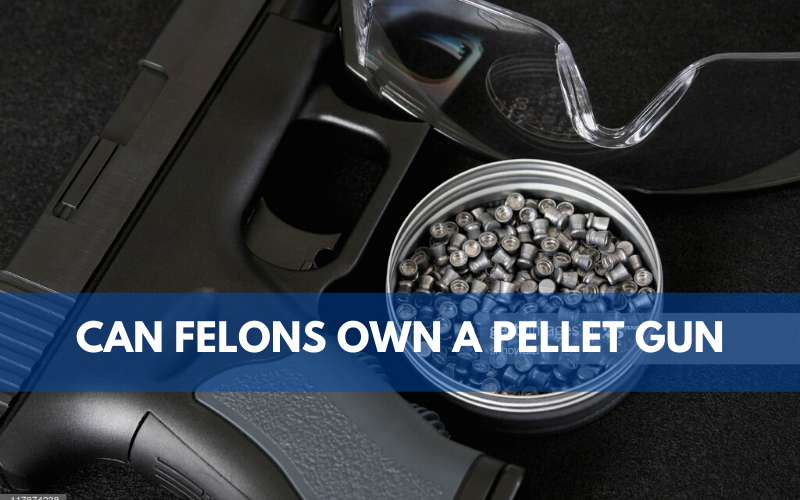 Can Felons Own a Pellet Gun
