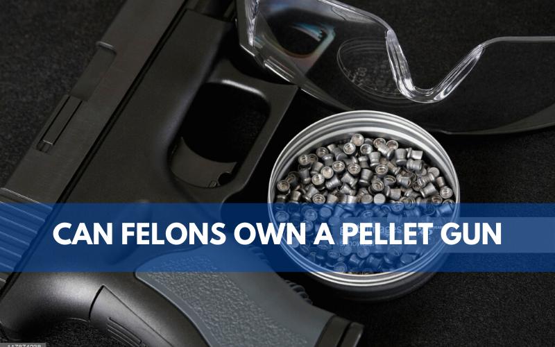 Can Felons Own a Pellet Gun