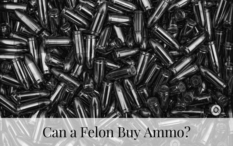 Can a Felon Buy Ammo?