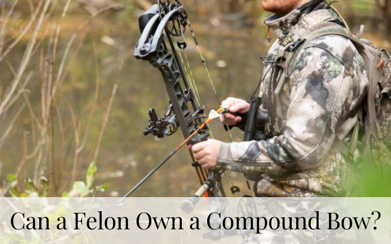 Can a Felon Own a Compound Bow