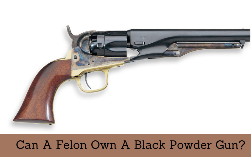 can a felon own a black powder gun