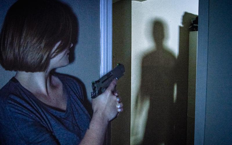 can i own a gun if my husband is a felon guide