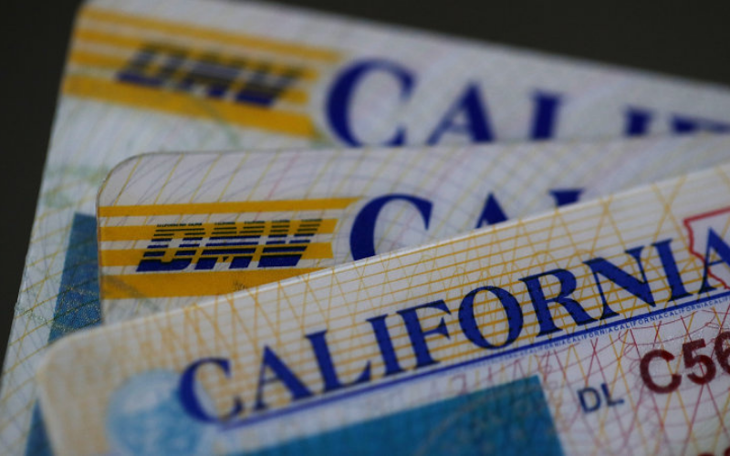 Does DMV Run Background Checks Expunge