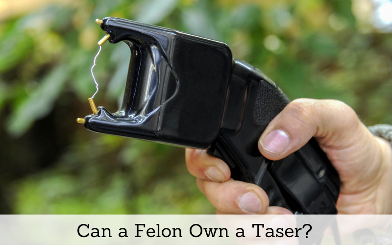 can a felon own a taser
