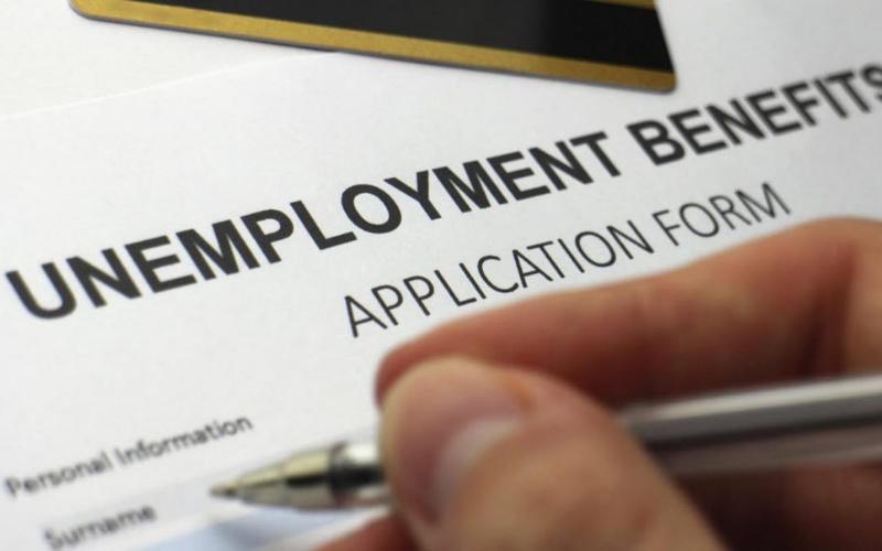 do a felon get unemployment