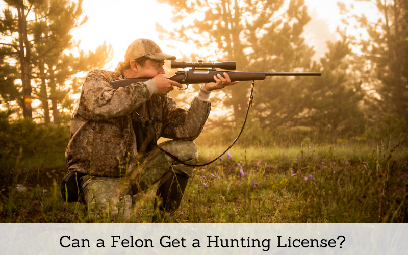 can a felon get a hunting license